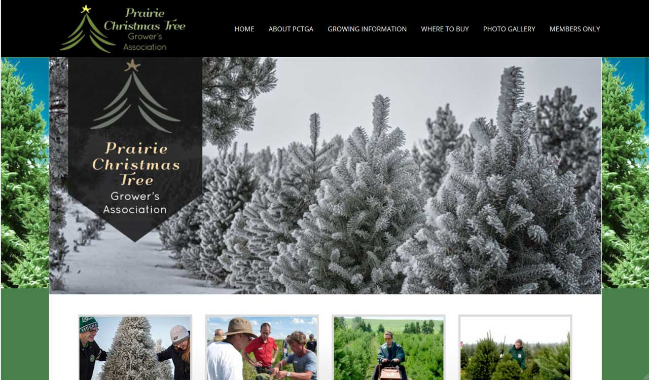 PCTGA website by fireflywebs.ca